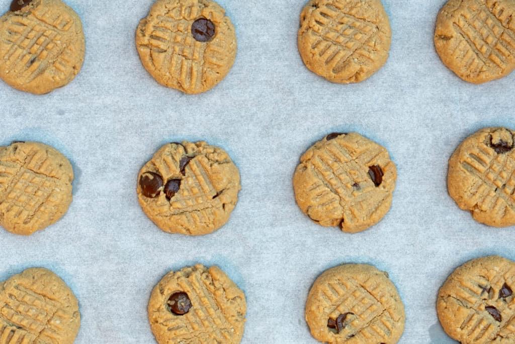 almond flour peanut butter cookies cooling after baking