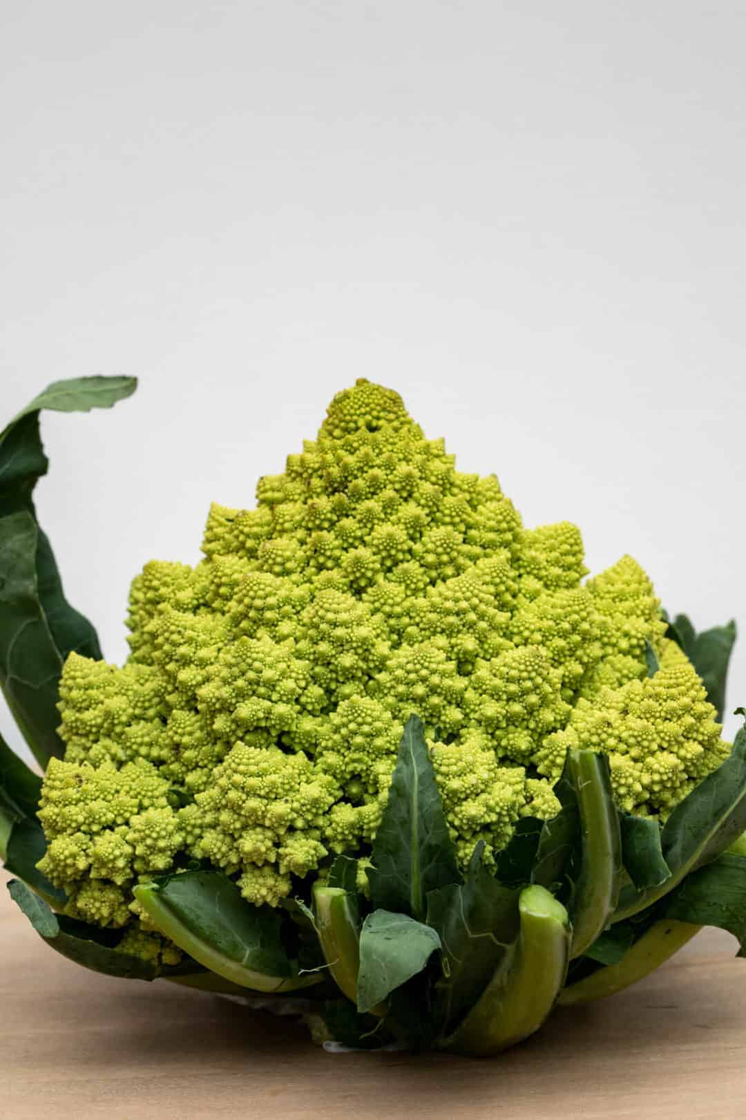 romanesco broccoli head